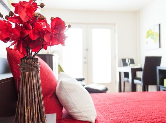 Maison de retraite pour personnes âgées semi-autonomes Studio / Bachelor a louer à Longueuil a Habitats Lafayette - Photo 05 - PagesDesLocataires – L19482