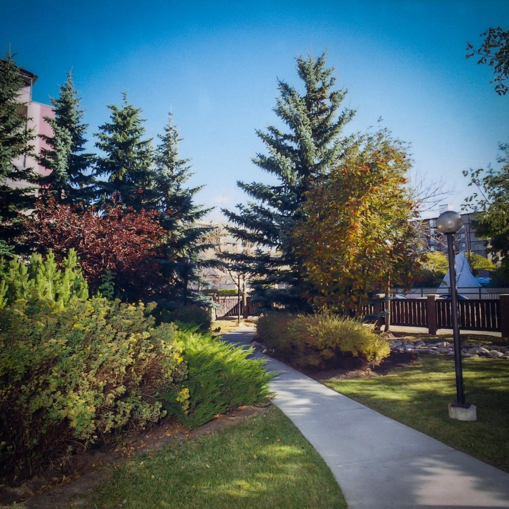 Appartement 2 Chambres a louer à Calgary a Chelsea Estates - Photo 02 - PagesDesLocataires – L157309