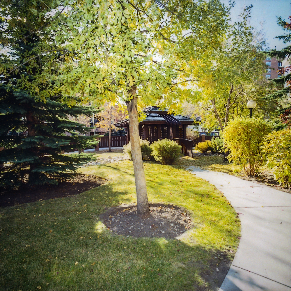 Appartement 2 Chambres a louer à Calgary a Chelsea Estates - Photo 03 - PagesDesLocataires – L157309