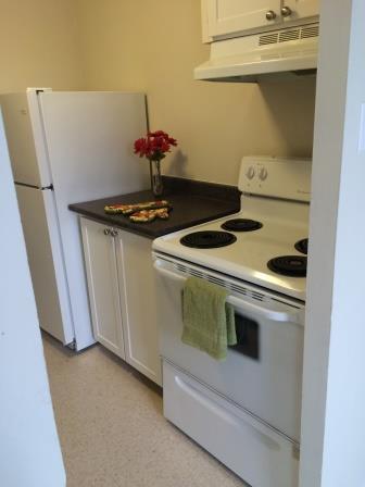 Appartement Studio / Bachelor a louer à Gatineau-Hull a Habitat du Lac Leamy - Photo 03 - PagesDesLocataires – L9125
