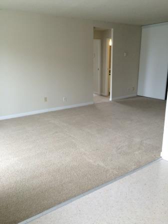 Appartement Studio / Bachelor a louer à Gatineau-Hull a Habitat du Lac Leamy - Photo 04 - PagesDesLocataires – L9125