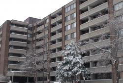 Appartement 1 Chambre a louer à Côte-Saint-Luc a 6555 Kildare - Photo 01 - PagesDesLocataires – L8018