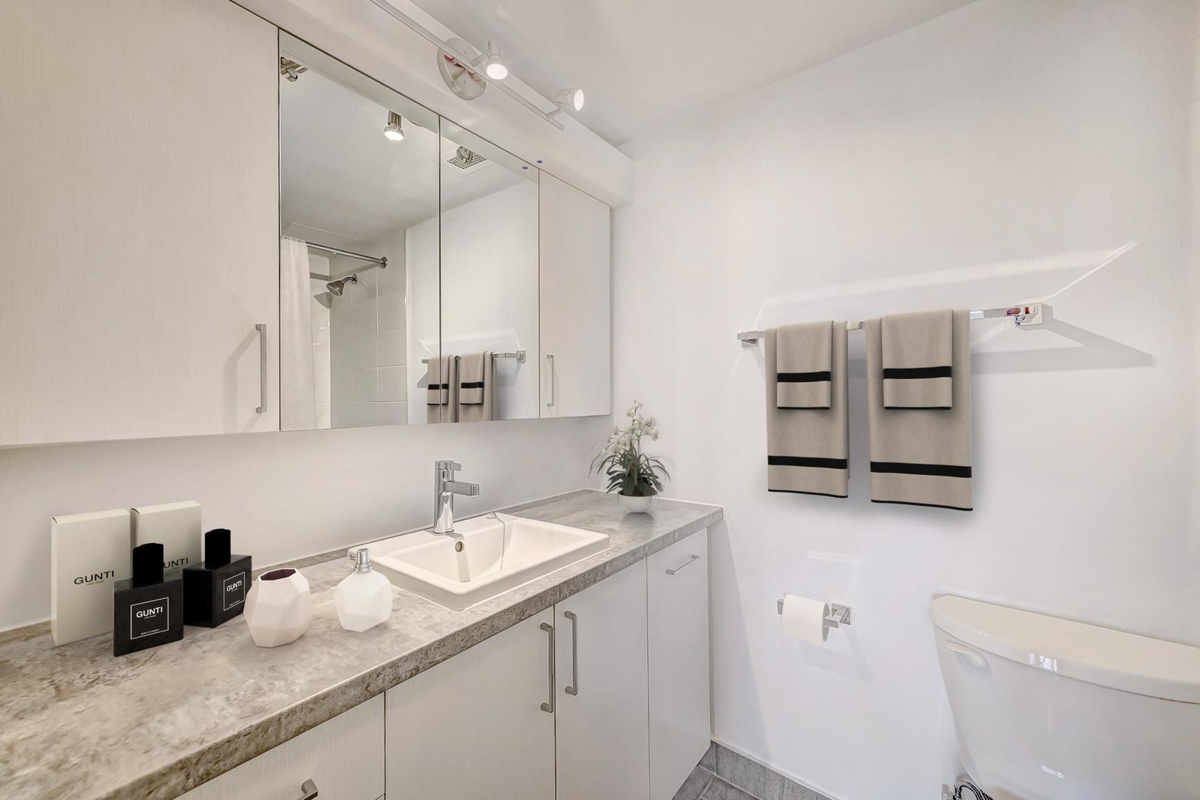 Appartement 1 Chambre a louer à Longueuil a Domaine dIberville Apartments - Photo 07 - PagesDesLocataires – L407144