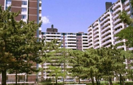 Appartement 1 Chambre a louer à Toronto a Rose Park - Photo 01 - PagesDesLocataires – L225030