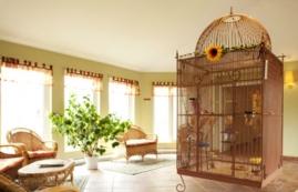 Maison de retraite pour personnes âgées autonomes 1 Chambre a louer à Sainte Foy a Jardins Logidor - Photo 01 - PagesDesLocataires – L19555