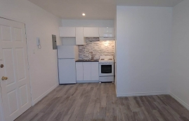 Appartement Studio / Bachelor a louer à Outremont a 1310-1314 Lajoie - Photo 01 - PagesDesLocataires – L209579