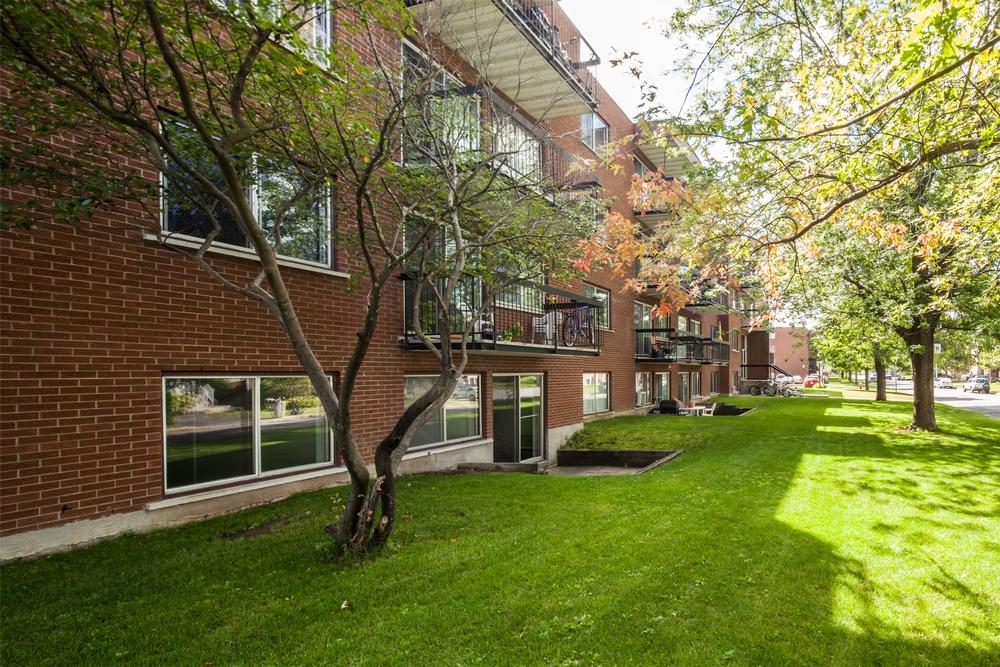 Appartement 2 Chambres a louer à Châteauguay a Pasteur - Photo 04 - PagesDesLocataires – L9512